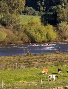 breede river marathon-compressor