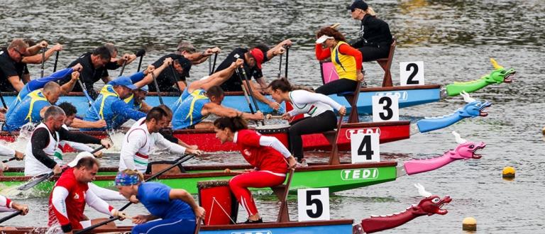 Dragon Boat Race