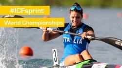 Semifinals K1W1000 | 2015 ICF Canoe Sprint World Championships